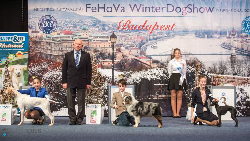 Winter Dog Show 2018